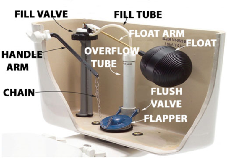 Inner Components of a Toilet
